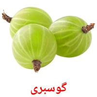 گوسبری picture flashcards
