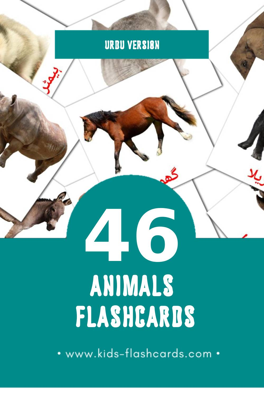 Visual جانور Flashcards for Toddlers (10 cards in Urdu)