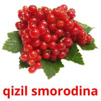 qizil smorodina picture flashcards
