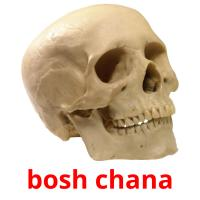bosh chana picture flashcards