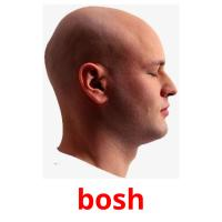bosh picture flashcards