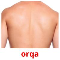 orqa picture flashcards