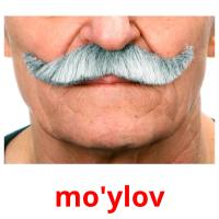 mo'ylov picture flashcards