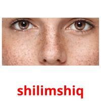 shilimshiq picture flashcards