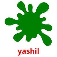 yashil picture flashcards