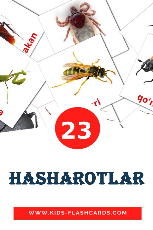 23 Hasharotlar Picture Cards for Kindergarden in uzbek