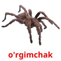 o'rgimchak picture flashcards