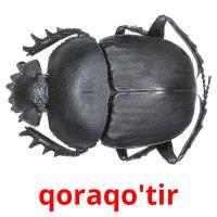 qoraqo'tir picture flashcards