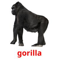 gorilla picture flashcards