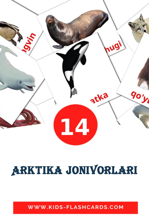 14 Arktika jonivorlari Picture Cards for Kindergarden in uzbek