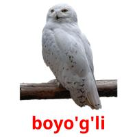 boyo'g'li picture flashcards