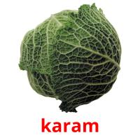 karam picture flashcards