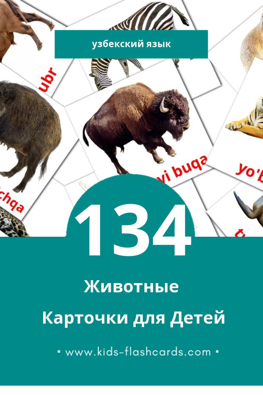 """""""Hayvonlar"""" - Визуальный Узбекском Словарь для Малышей (134 картинок)"""
