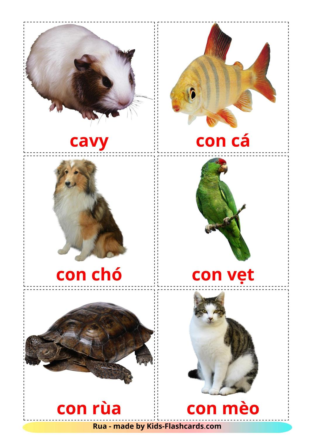 Domestic animals - 10 Free Printable vietnamese Flashcards