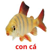 con cá picture flashcards