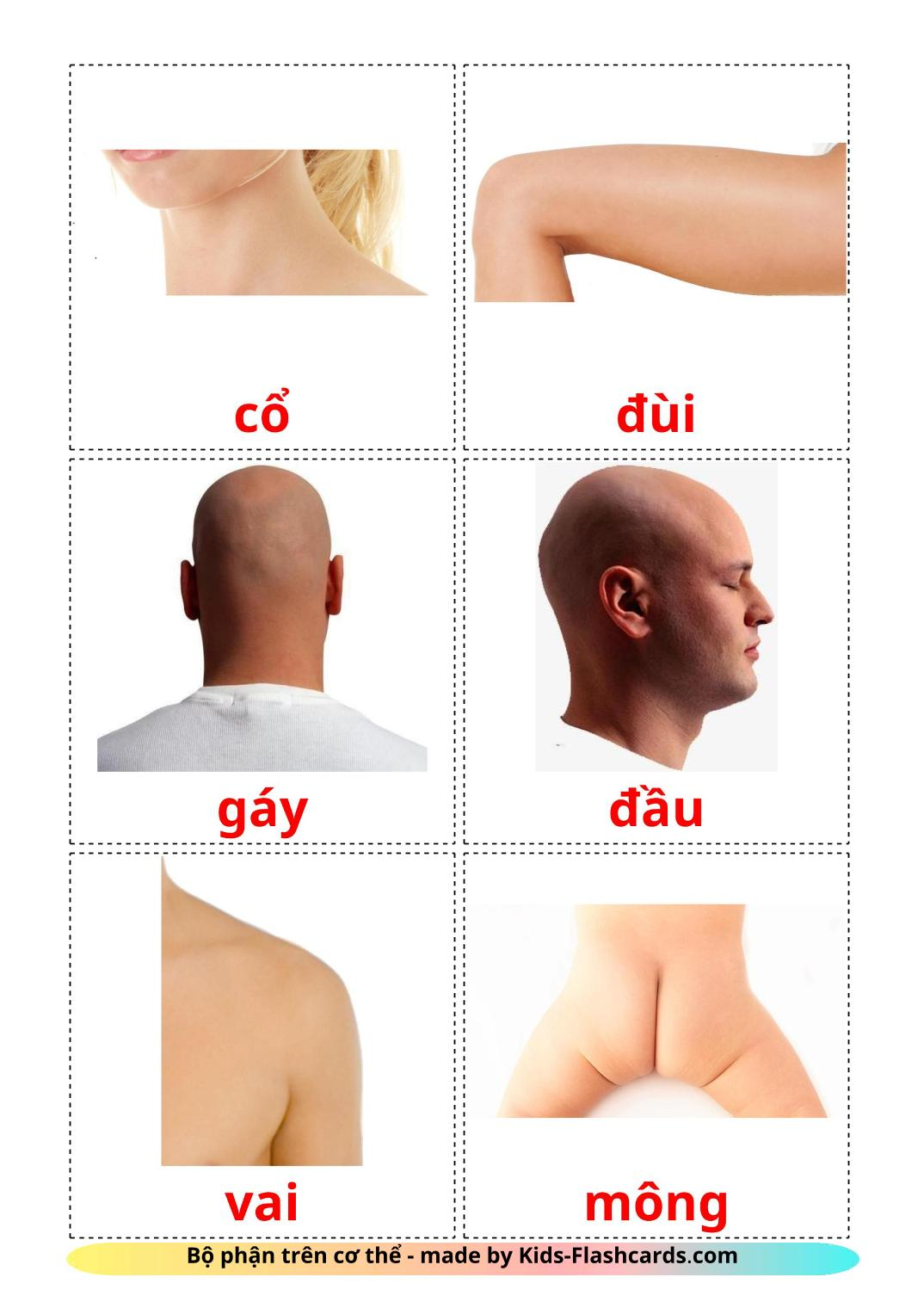 Body Parts - 26 Free Printable vietnamese Flashcards