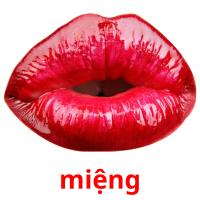 miệng picture flashcards