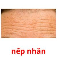 nếp nhăn picture flashcards