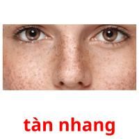 tàn nhang picture flashcards