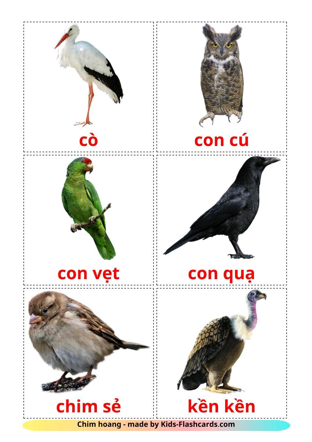 Wild birds - 18 Free Printable vietnamese Flashcards