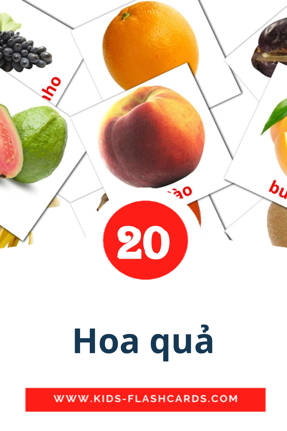 Hoa quả - free cards in vietnamese