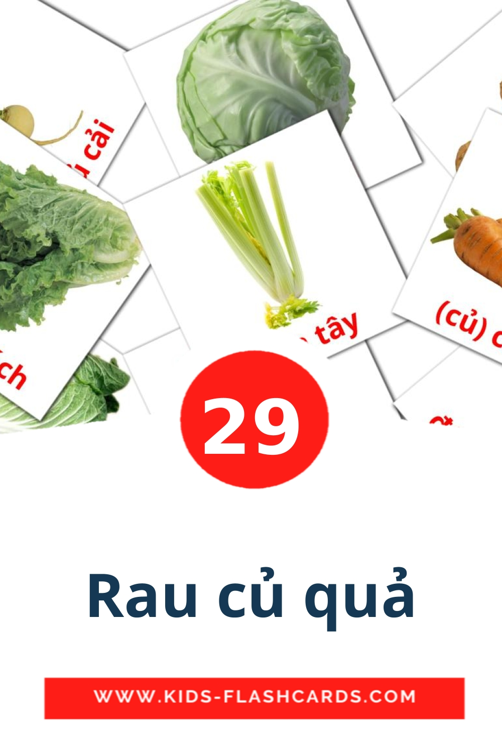 29 Rau củ quả Picture Cards for Kindergarden in vietnamese