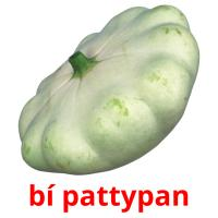 bí pattypan picture flashcards