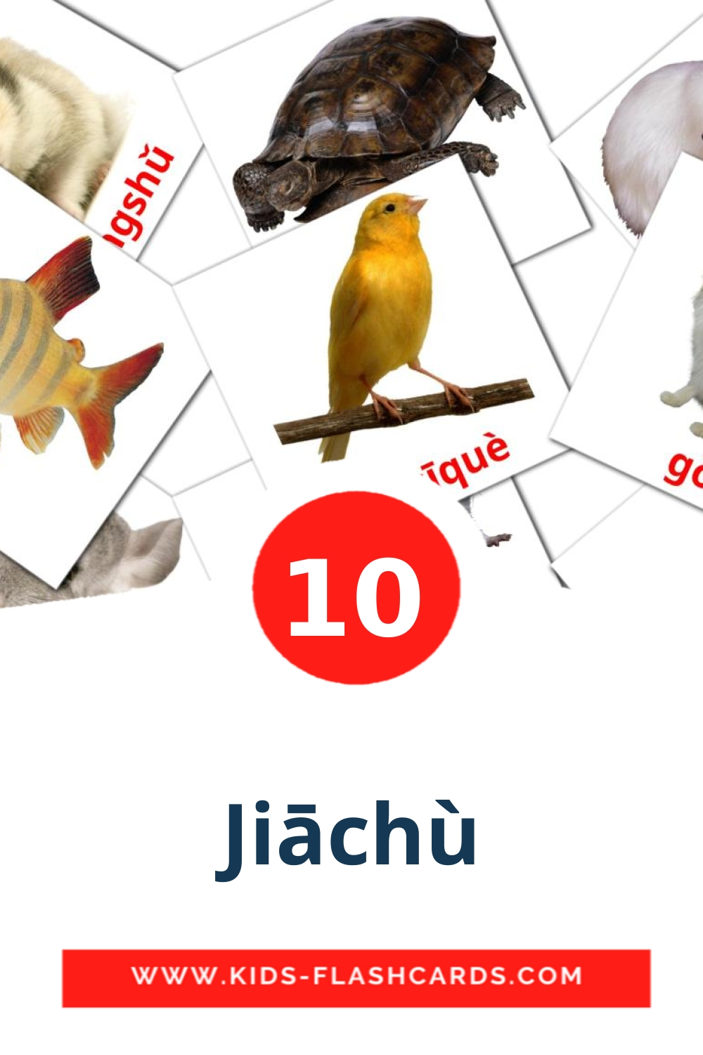10 Jiāchù Picture Cards for Kindergarden in pinyin