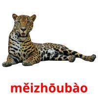 měizhōubào picture flashcards