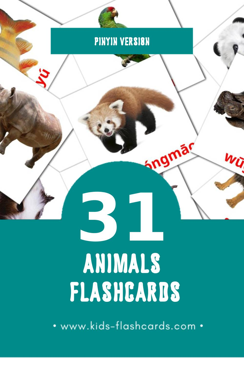 Visual Dòngwù Flashcards for Toddlers (31 cards in Pinyin)
