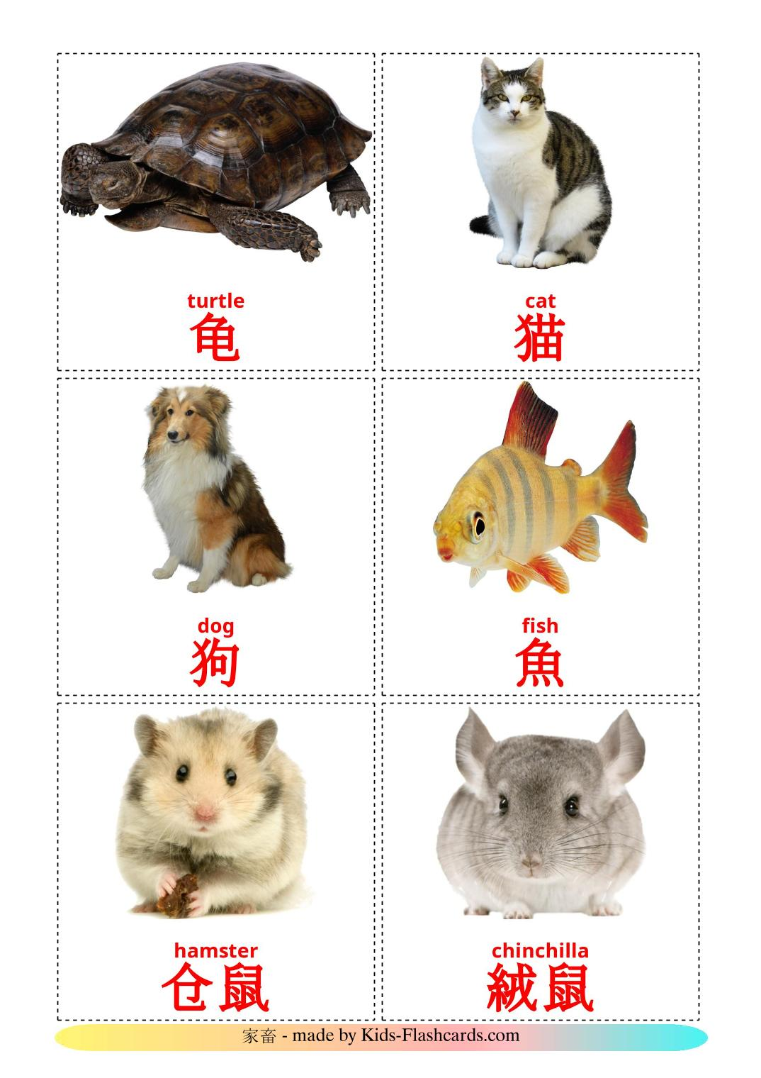 Domestic animals - 10 Free Printable chinese(Traditional) Flashcards