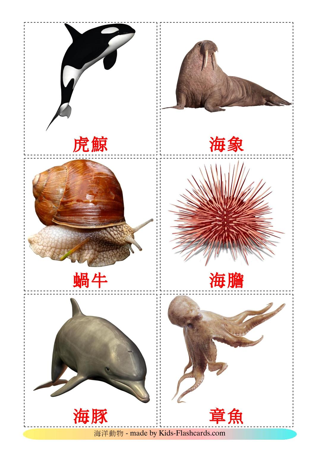 Sea animals - 29 Free Printable chinese(Traditional) Flashcards