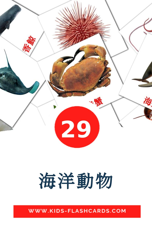 29 海洋動物 Picture Cards for Kindergarden in chinese(Traditional)