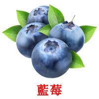 藍莓 карточки энциклопедических знаний