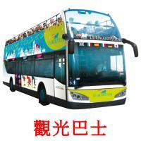 觀光巴士 picture flashcards