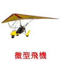 微型飛機 picture flashcards