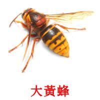 大黃蜂 карточки энциклопедических знаний