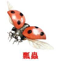 瓢蟲 карточки энциклопедических знаний
