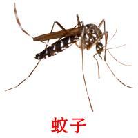 蚊子 карточки энциклопедических знаний