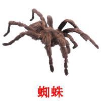 蜘蛛 карточки энциклопедических знаний