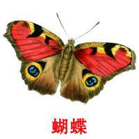 蝴蝶 карточки энциклопедических знаний