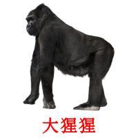 大猩猩 карточки энциклопедических знаний