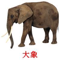 大象 карточки энциклопедических знаний