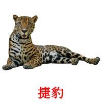 捷豹 карточки энциклопедических знаний