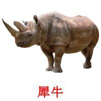 犀牛 карточки энциклопедических знаний