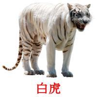 白虎 карточки энциклопедических знаний