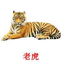 老虎 карточки энциклопедических знаний