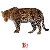 豹 карточки энциклопедических знаний