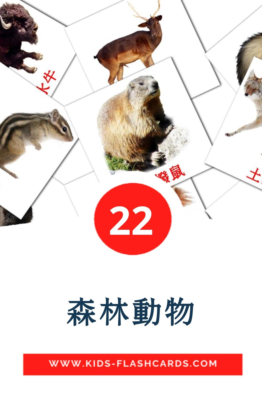 22 森林動物 Picture Cards for Kindergarden in chinese(Traditional)