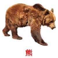 熊 picture flashcards